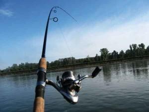 Какой спиннинг выбрать для рыбалки
