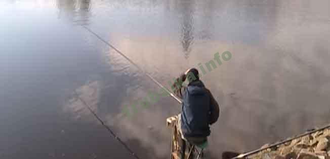 Рыбалка маховой удочкой. Тактика и техника