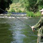 Рыбалка в проводку на болонскую удочку