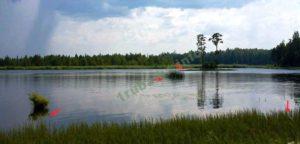 Ловля летом на поплавочную удочку выбор места