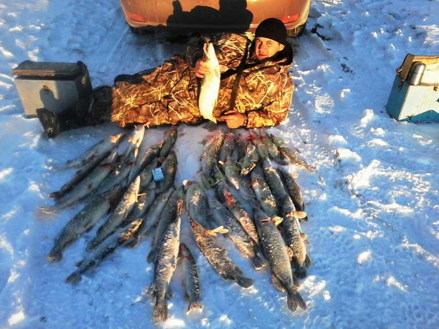 Ловля щуки зимой на течении